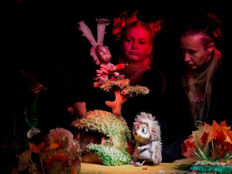 Фото пресс-службы Сахалинского театра кукол