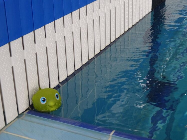 В углу бассейна притаился наблюдатель
