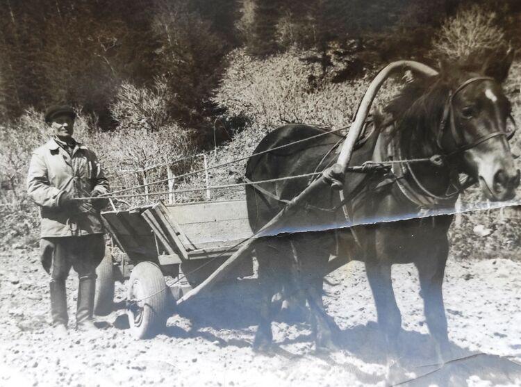 Михаил Васильевич очень любил лошадей, на них все хозяйство держалось. Фото 60-х годов