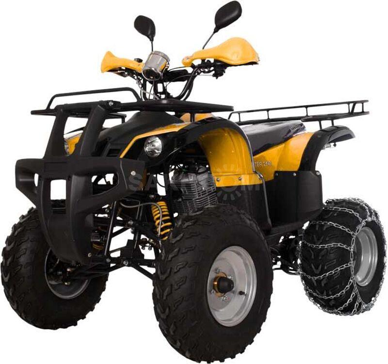 Avantis Hunter 250, 2021