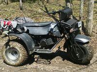 Муравей Ataman trike AWD, 2016
