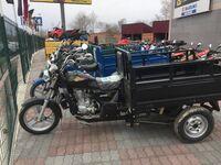 Stels Трицикл Десна 200, 2016