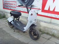 Suzuki choinori, 2000