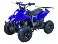 ATV 110, 2020