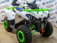 Avantis Forester 200 Lux, 2021