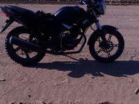 Regulmoto ZF200-1 , 2014