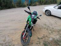 Regulmoto SK 200 GY-4, 2015