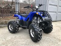 Grizzly 150, 2017