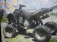 ATV 110, 2013