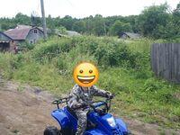 ATV 110, 2018